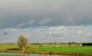 Groene Waterparel met regenboog bij de Vierde Tocht achter het Gemaal Abraham Kroes (1MB)