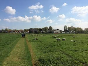 Wandelpad bij Oud Verlaat